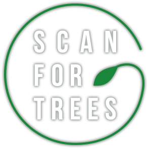 now2 title - Scan for Trees